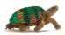 turtle-17112014-2.png